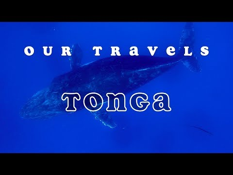 OurTravels | Tonga 4K