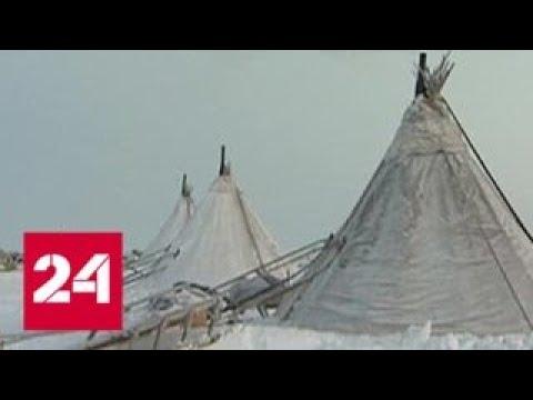 На севере Сибири женщины стали шить одежду и обувь из шкур оленей Россия 24