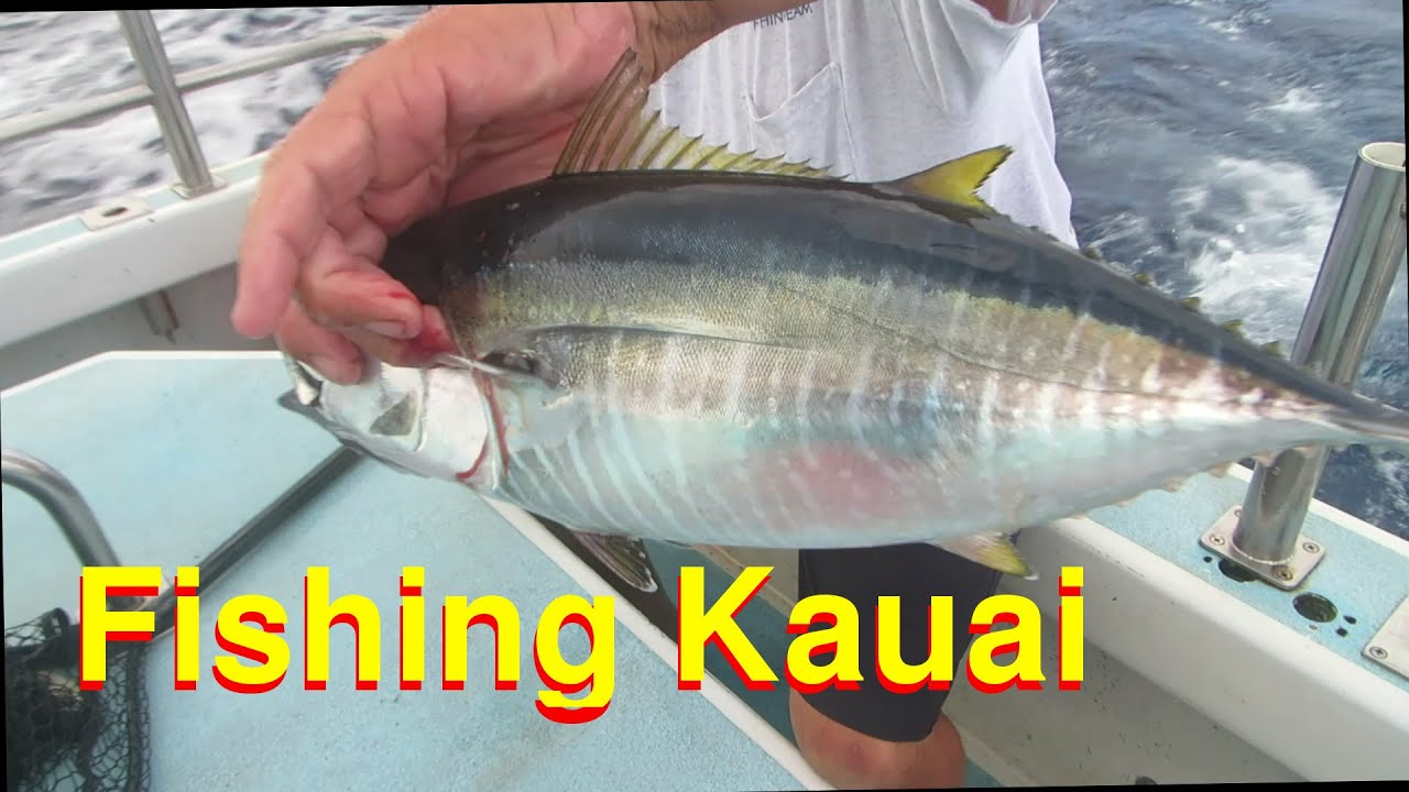 Fishing in a wild sea island of kauai hawaii youtube for Kauai fishing report