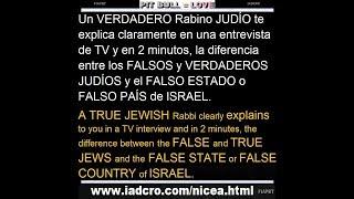 Verdaderos y Falsos Judíos/True and False Jews. Israel?