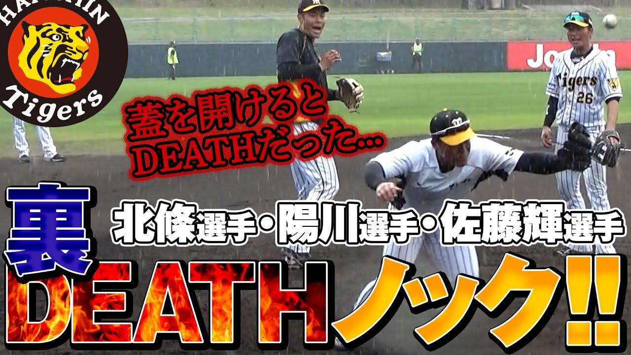 Download 【蓋を開けるとDEATHだった】陽川選手・北條選手・佐藤輝明選手の裏DEATHノック!!