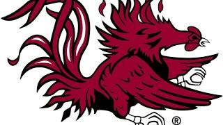 Logo Dojo: South Carolina GameCocks (Speed)