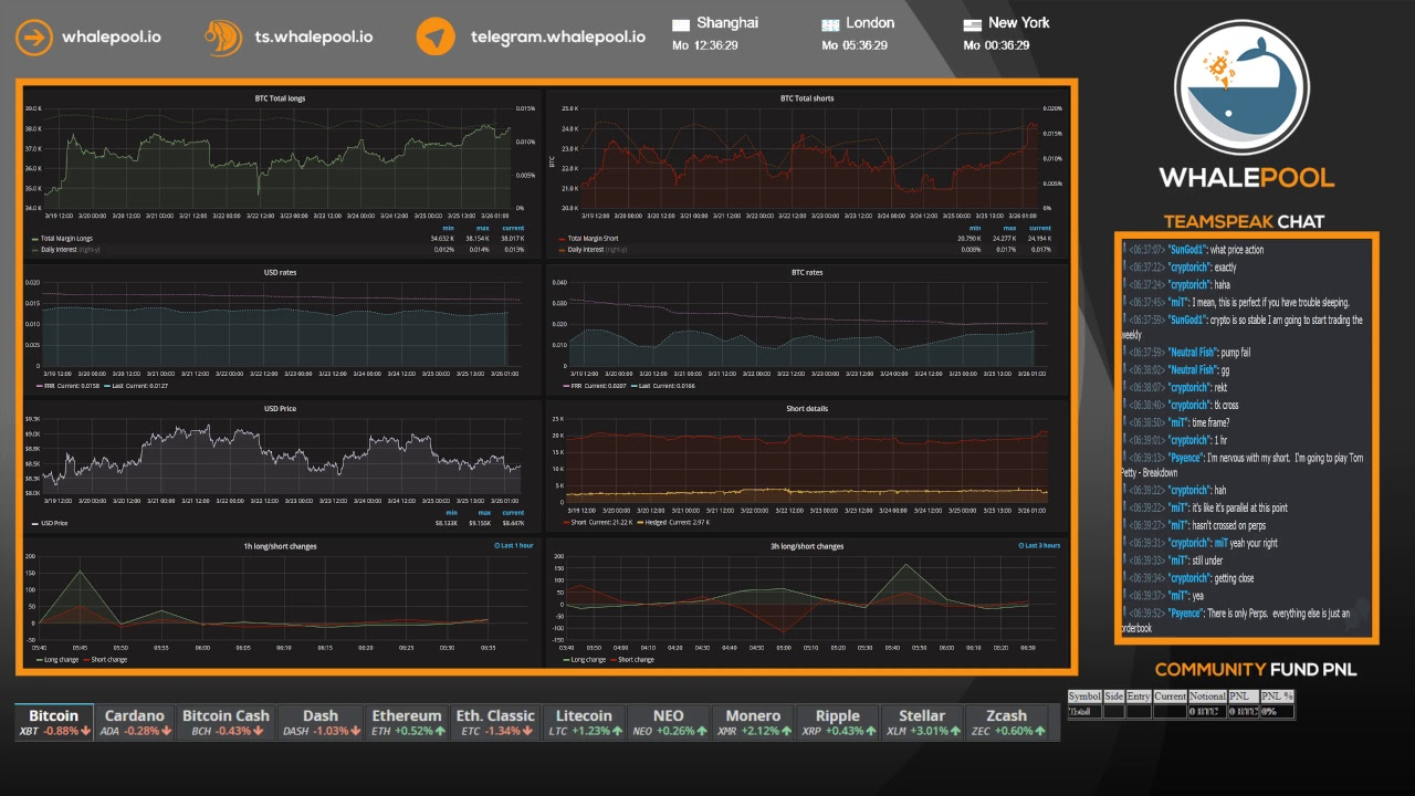 Whalepool live bitcoin cryptocurrency trading stream 24 7 365