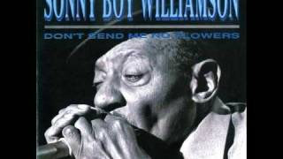 Jimmy Page, Sonny Boy Williamson II - One Way Out