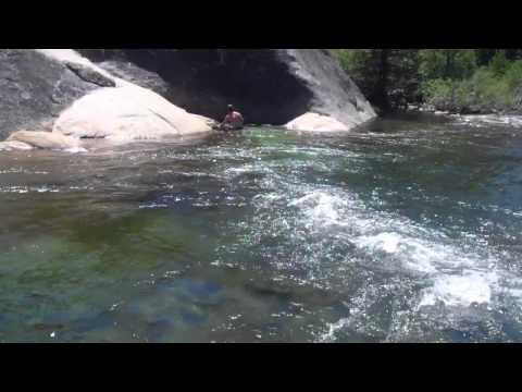 Snake in the River!!!!!