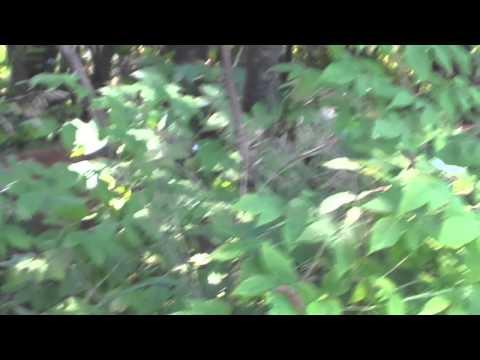 Montreal, Canada - Mount Bruno bike and hike
