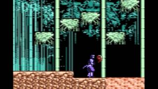 Return Of The Ninja (Game Boy Color)