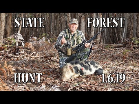 STATE FOREST HUNT 1.6.19