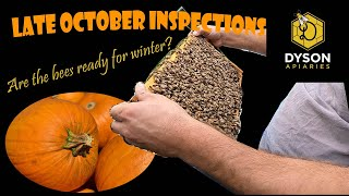 Fall Inspections-Are the bees ready for Winter