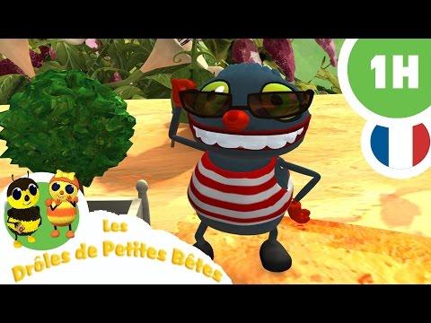 DRÔLE DE PETITES BÊTES - 1 Heure + - Compilation #01