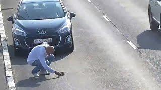 Спас котенка на дороге в Калининграде