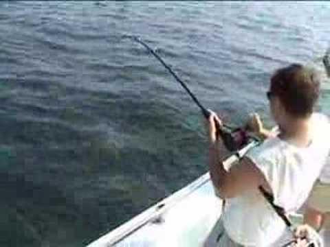 Deep sea fishing dusky shark youtube for Nc deep sea fishing charters