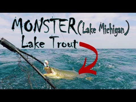 Deep Summer Pattern Lake Michigan Monster Lake Trout & Salmon 100ft + Of Water (Charter Fishing)