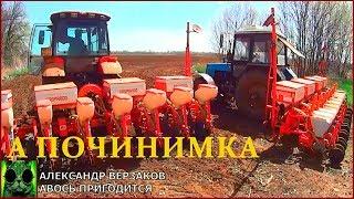 видео И ещё немного о кукурузе: 10 советов