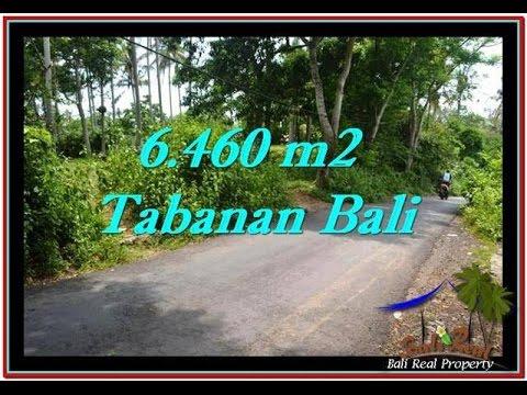 Ocean View Land for sale in Tabanan Bali near the beach  TJTB256