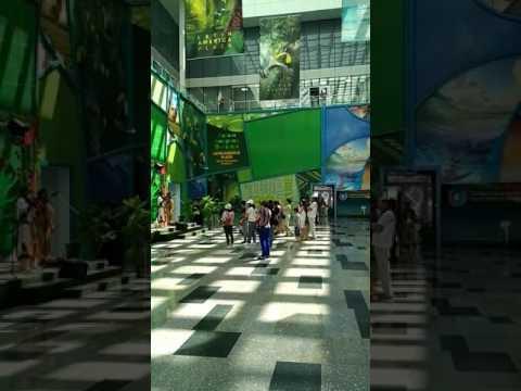 # Expo2017 Astana Kazakhstan! #Future Energy! Крас.муз.в исп.попул.индейцов из Латинской Америки!