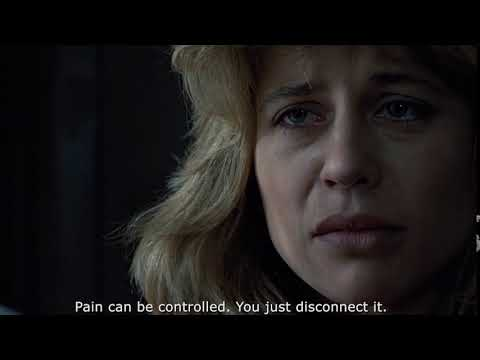 Terminator - Pain can be controlled