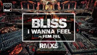 Скачать BLISS I Wanna Feel Ft Fem Fel Kydus Edit