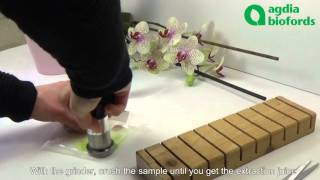 How to detect easily viruses on Orchids?