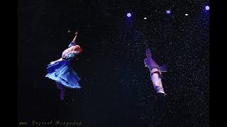 Новогоднее цирковое шоу «В Тридевятом царстве»!