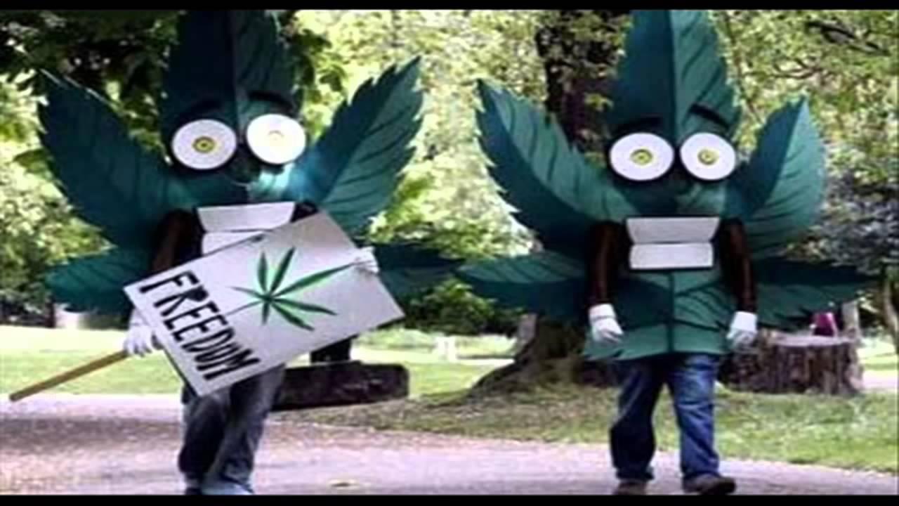 Клип кабриолет конопля чистые сорта марихуаны