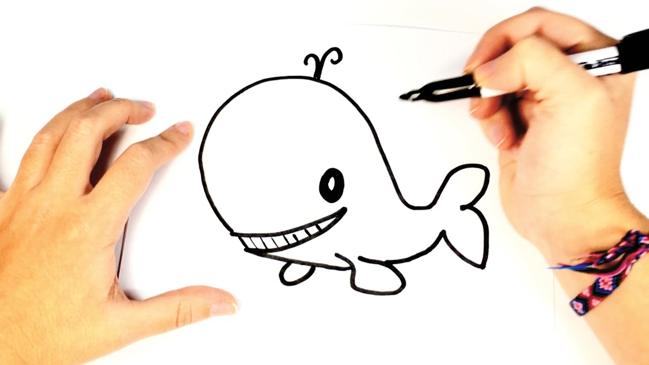 how to draw a whale for kids easy whale drawing tutorial youtube