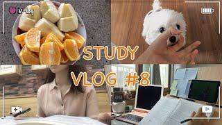 [공시생 브이로그#8] 4.17~19 | study v…