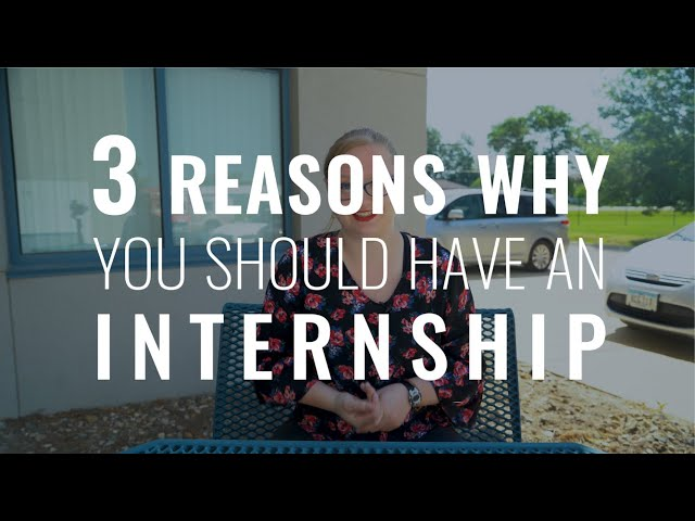 Why You Should Have an Internship at CITY | CITY Intern Perspective