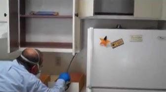 Cockroach Fogging | Essential Pest Control