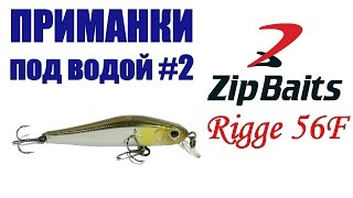Приманки под водой #2. Воблер ZipBaits Rigge 56F SR / Подводные съемки воблеров