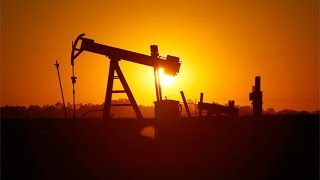 $10 a Barrel Oil Is Absolutely Possible: Schork