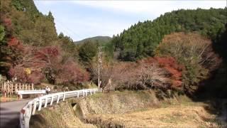 藤枝市滝ノ谷不動峡紅葉2016年11月20日Takinoya Fudokyo, Fujieda City, Shizuoka JAPAN