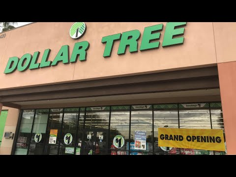 Brand New Dollar Tree Store and Haul