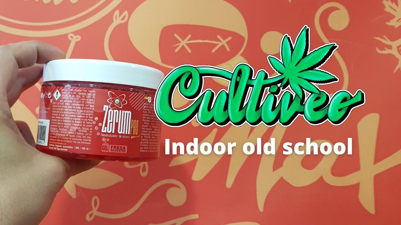 CULTIVEO INDOOR OLD SCHOOL