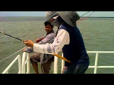 คลิบตกปลากระเบนที่บางตะบูน09052011029.mp4