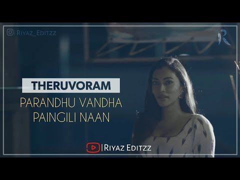 theruvoram-parandhuvandha-paingili-naan  -tamil-whatsapp-status-  -female-  -lyrics-  -riyazeditzz