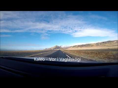 Kaleo - Vor Í Vaglaskógi Lyrics
