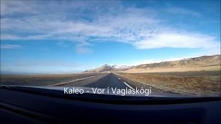 Kaleo Vor Í Vaglaskógi Lyrics