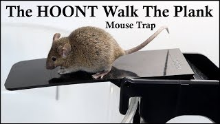 The HOONT Walk The Plank Mouse Trap - Mousetrap Monday