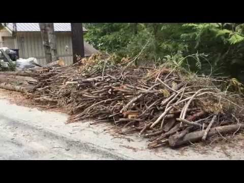 Conservation News Minute: Cascadia's Chipping Program