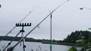 Рыболовные Приключения Рыбалка Онлайн на Сома