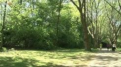 Duisburg Meiderich 100 Jahre Stadtpark