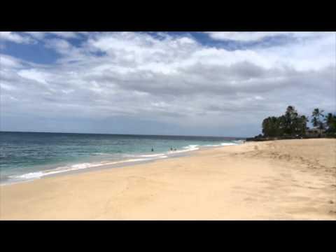 Beach Lovers Hawaii 84-965 Farrington Hwy Waianae, HI 96792