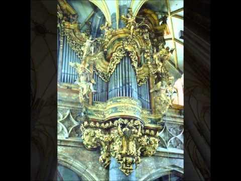 Max Reger: Introduktion und Passacaglia d-moll, Ján Blahuta - Orgel, A.D. 2000, Schwaz in Tirol