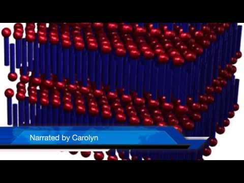 LIQUID CRYSTALS: the mystery substance (REAL VIDEO)
