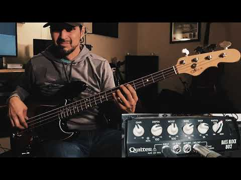 Quilter Labs Bass Block 802 Demo Review