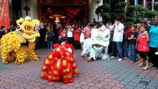 20120123 Tarian Singa berciri 1Malaysia