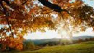Video Yolanda Adams(Still I Rise) download MP3, 3GP, MP4, WEBM, AVI, FLV Desember 2017