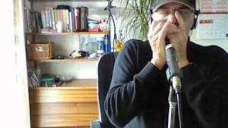vuclip Marcelle and Marcel - Harmonica - JJ Milteau Cover