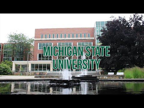 Michigan State University - Admissions Intel